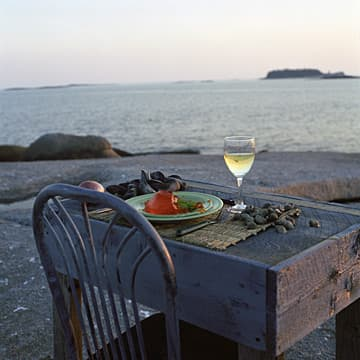 Dinner Party for One on Nothingness, Maine, 2002